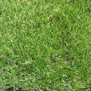 Искусственная трава CONGRASS Jakarta 40 мм